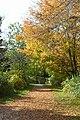 Pioneer autumn (265931837).jpg