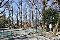Playground - Arisugawa-no-miya Memorial Park - DSC06857.JPG