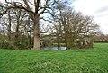 Pond east of Beckett's Farm - geograph.org.uk - 1262757.jpg