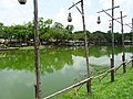 Pond in Ayutthaya Historical Park 3.jpg