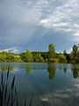 Pond near Racje selo (2330835267).jpg