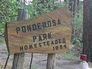 Ponderosa Park, Arizona Populated place in Arizona, United States