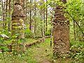 Pozostałość po ogrodach antycznych w Płocicznie.jpg