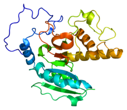 Protein ABO PDB 1lz0.png