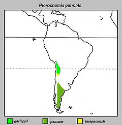 Pterocnemia pennata Distribution map.jpg