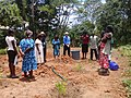 Rachel the tireless tree planter, Kenya photo 2.jpg