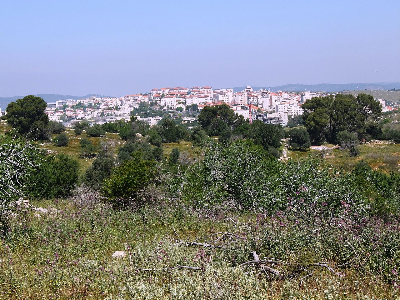 Ramat Beit Shemesh: File:Ramat Beit Shemesh, As Seen From Bayt Nattif, April