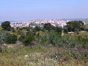 Ramat_Beit_Shemesh,_as_seen_from_Bayt_Nattif,_April_2015