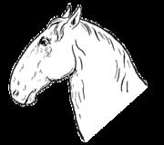 Příklad klabonosého (římského) nosu