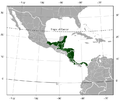 Red-eyed Treefrog Agalychnis callidryas distribution map.png