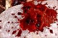 Red liquid (menstrual blood).jpg