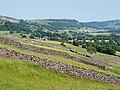 Reeth from west.jpg