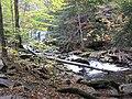 Ricketts Glen State Park Oneida Falls 2.jpg