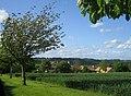 Ridgebarn Farm near Cuddington - geograph.org.uk - 440726.jpg