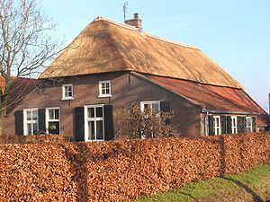 Dutch brick - Old Dutch farmhouse with thatched roof