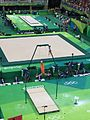 Rio 2016 Olympic artistic gymnastics qualification men (28517632964).jpg