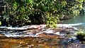 Rio nas proximidades de Alto Garças.jpg