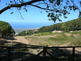 Nature Reserve Bosco di Alcamo - The Nature Reserve Bosco di Alcamo
