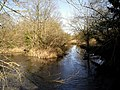 River Itchen between Itchen Abbas and Avington Park - geograph.org.uk - 141344.jpg