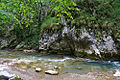 River Mali Rzav and Visocka Banja Spa in Serbia - 4283.NEF 12.jpg