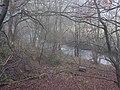River Teme, Crug-y-byddar - geograph.org.uk - 300336.jpg