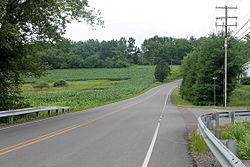 Schoolhouse Road and summer scenery in Mahoning Township