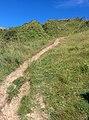 Rock-cornwall-england-tobefree-20150715-165110.jpg