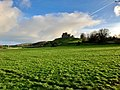 Rock of Cashel, Caiseal, Éire - 44767931680.jpg