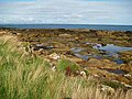 Rock pools - geograph.org.uk - 988972.jpg