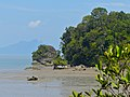 Rocky Outcrops and Mudflat at Low Tide (15737772085).jpg