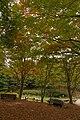 Rokko alpine botanical garden15s5s4272.jpg