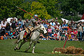 Roman cavalry reenactment Carnuntum 2008 15.jpg