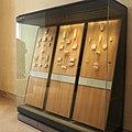 Room 320 display case 2-P5280732.JPG