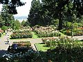 Rose Garden PDX.jpg