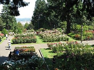 Washington Park (Portland, Oregon) - The International Rose Test Garden