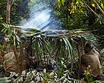 Royal Marines feel the heat in the jungle of Belize MOD 45162174.jpg