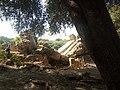 Ruines Romaines Tipaza 27.jpg