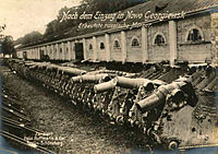 Russian artillery captured at Novo Georgievsk.jpg