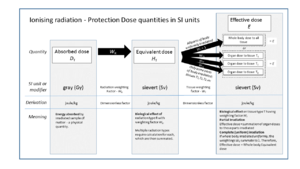 "Sievert - Graphic showing relationship of ""protection dose"" quantities in SI units"