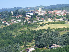 A general view of Saint-Martin-la-Plaine