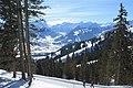 Saanenmöser - Plani - Rellerli - panoramio (38).jpg