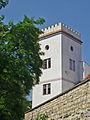 Saaz-Wasserturm.jpg