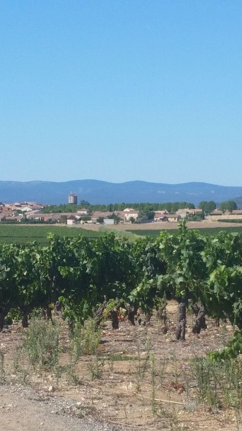 Sainte-Valière vue des vignes par la route de Ventenac