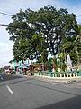 Sampaloc,Quezonjf9610 37.JPG