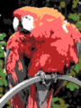 Sample image with SAM Coupé palette.png