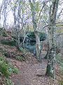 Sandstone Trail - geograph.org.uk - 1562397.jpg