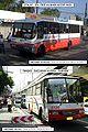 Santrans bus ply sjdm.jpg