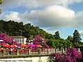 Santuário do Bom Jesus do Monte - Portugal (14527018313).jpg