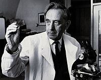 Saul Adler. Photograph by Harris. Wellcome V0025953.jpg