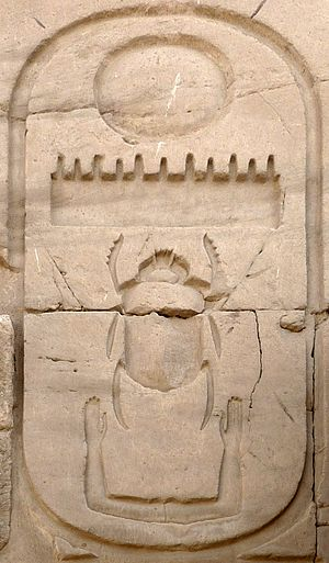 Scarabaeidae - Sacred scarab in a cartouche of Thutmosis III from Karnak temple of Amun-Ra, Egypt